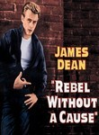 Rebel Without a Cause: Special Edition