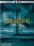 Crash of Flight 447: Nova