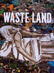 Waste Land Cover